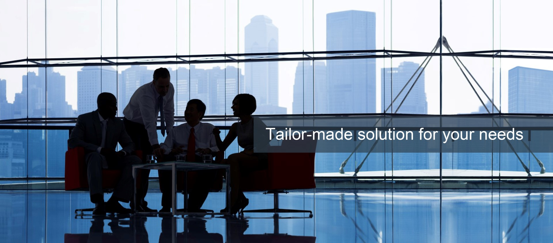 Tailor-Made Solution For Your Needs